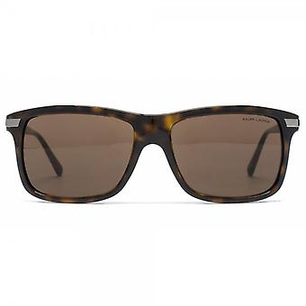 Polo Ralph Lauren Automotive Evolution Square Sunglasses In Dark Havana
