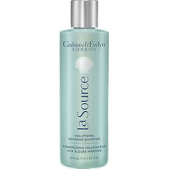 Crabtree & Evelyn La Source aufpolsternden Meeresalgen Shampoo