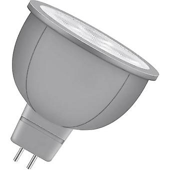 LED GU5.3 Reflector 4 W = 20 W Warm white (Ø) 50 mm EEC: A+ Neolux 1 pc(s)