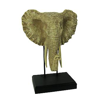 Off-White Elephant Head Sculpture on Museum Mount Stand