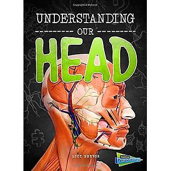 Verständnis von unserem Kopf (Gehirn, Körper, Knochen!)