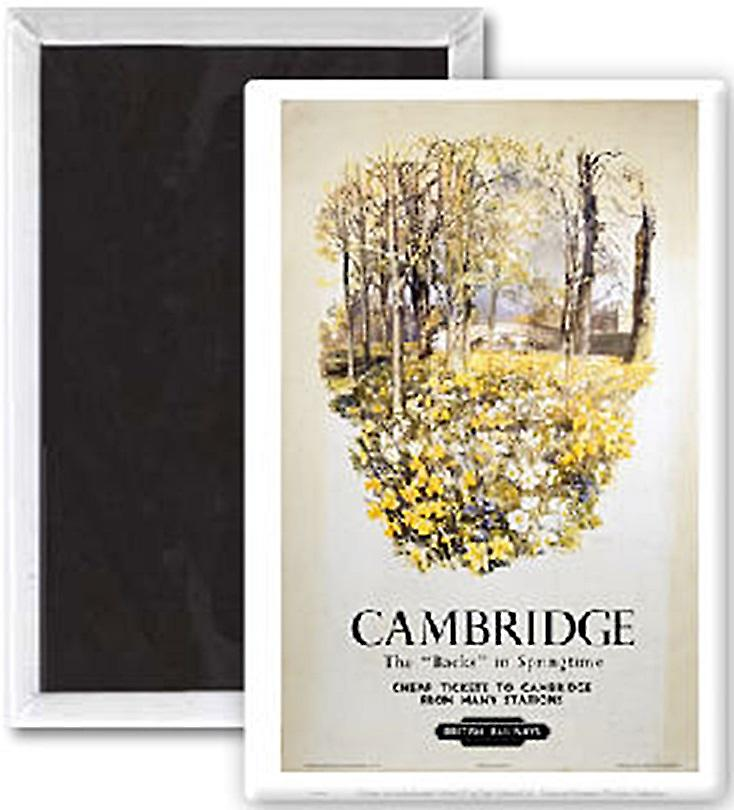 Cambridge Backs In Springtime (old rail ad.) steel fridge magnet    (se)