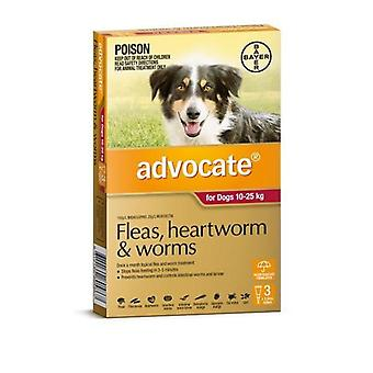 Advocate 3 Pack Large Dogs 10-25kg