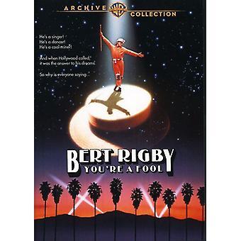 Bert Rigby, du är en idiot [DVD] USA import