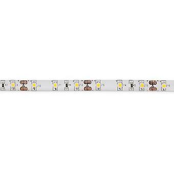 Wellindal Led Strip Warm White 36W 24Vdc 5Mt Ip65 (Lighting , Led strips)