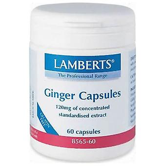 Lamberts Cap. Ginger 12000 Mg 60 Cap (Vitamins & supplements , Special supplements)