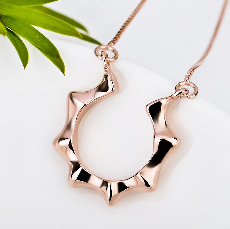 Affici Sterling Silver Necklace 18ct Rose Gold Plated Horseshoe Motif
