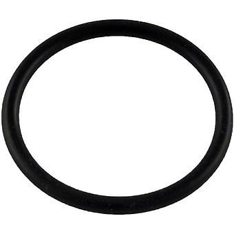 Pentair LG32 O-Ring for Lower Bearing