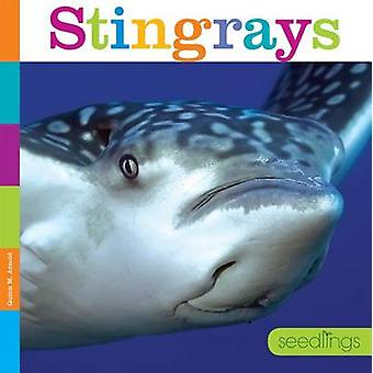 Stingrays by Quinn M Arnold - 9781608187829 Book
