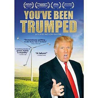 Du har varit falska [DVD] USA import