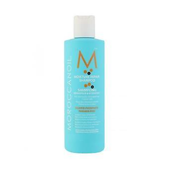 Marokkansk olie marokkanske olie fugt Repair Shampoo