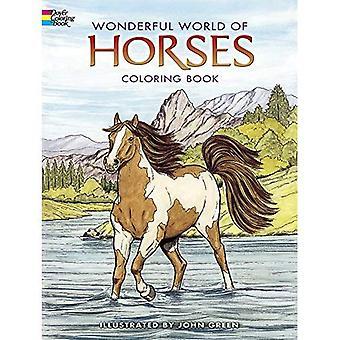 Meraviglioso mondo di cavalli da colorare libro (Dover Colouring Books)