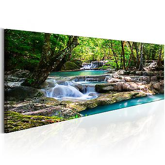 Canvas print-natuur: bos waterval