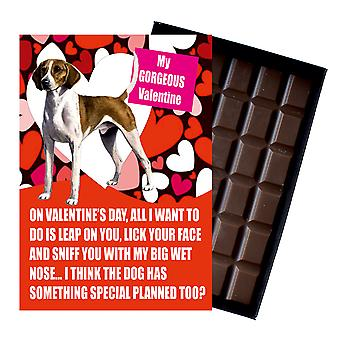 Foxhound Gift for Valentines Day Presents For Dog Lovers Boxed Chocolate