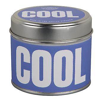 Words Fail Me Collection Candle in a Tin - Cool