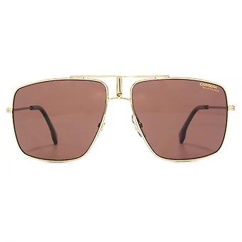 Carrera 1006/S Sunglasses In Gold Burgundy Polarised