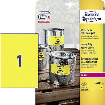 Avery-Zweckform L6111-20 Labels (A4) 210 x 297 mm Polyester film