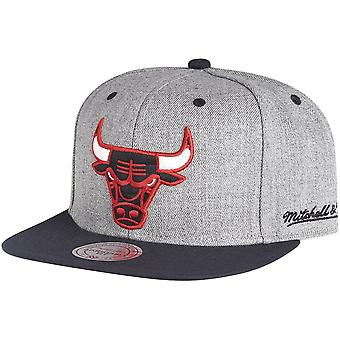 Mitchell & Ness Strapback Cap - BACKBOARD Chicago Bulls grey