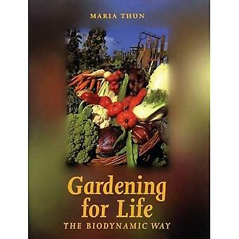 Gardening for Life: The Biodynamic Way (Art & science series)