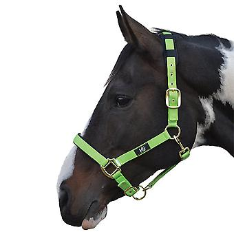 Hy Deluxe Padded Head Collar - Bright Green - Pony
