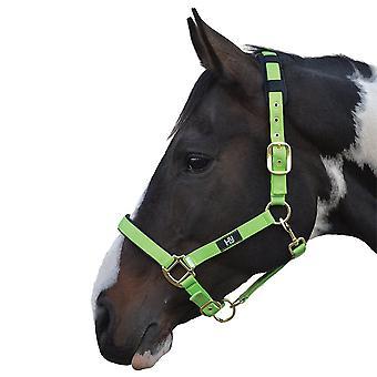 Hy Deluxe gepolsterte Kopf Kragen - hellgrün - Pony