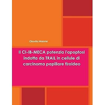 Il IC-Ib-Meca Potenzia L'Apoptosi Indotta Da camino en Cellule Di Carcinoma Papillare Tiroideo