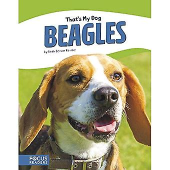 That's My Dog: Beagles