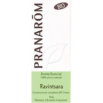 Pranarom Essential Oil Ravensara Bio (Hygiene and health , First Aid Kit , Others)