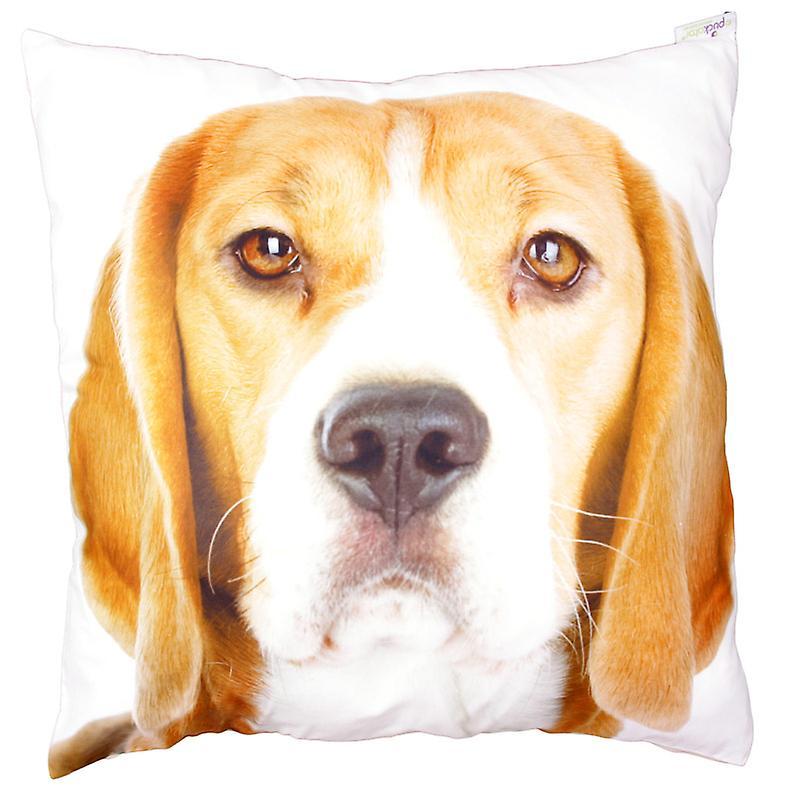 Puckator Beagle Photo Design Scatter Cushion 49x49cm