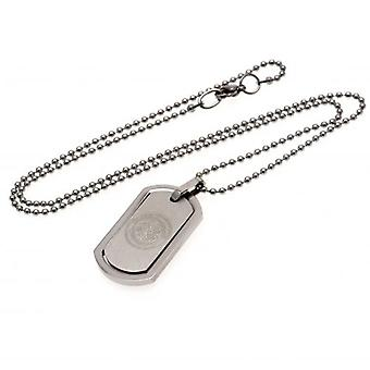 Celtic incorniciato Dog Tag & catena