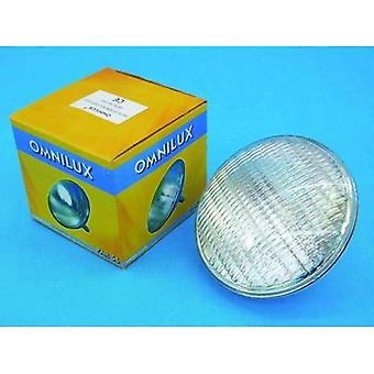 Halogen Omnilux WFL Schwimmbad 12 V G53 STC 300 W