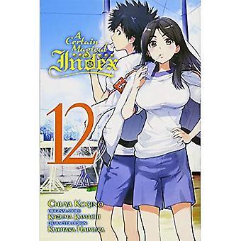 Eine bestimmte magische Index, Vol. 12 (Manga)