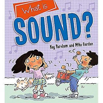 Att upptäcka vetenskap: Vad är ljud? (Upptäcka vetenskap)