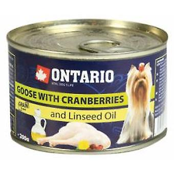 Ontario Mini Ternera, Boniato Y Aceite De Linaza (Dogs , Dog Food , Wet Food)