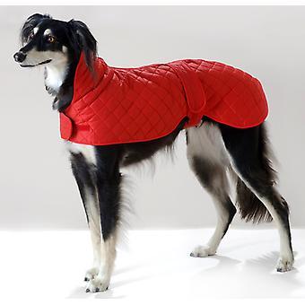 Greyhound Anorak Red 51cm (20