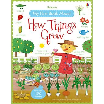 My First Book About How Things Grow (My First Books) (Paperback) by Brooks Felicity