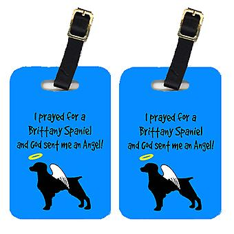 Carolines Treasures  AN1017BT Pair of 2 Brittany Luggage Tags