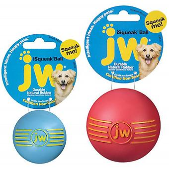 JW Pet iSqueak Ball Dog Toy, Medium Size