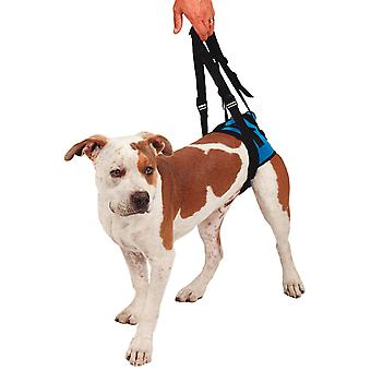 KVP Arnés De Movilidad Trasero M (Dogs , Collars, Leads and Harnesses , Harnesses)