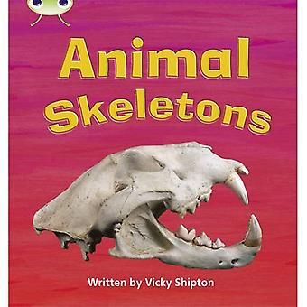 Animal Skeletons: Phase 5 (Non-Fiction)