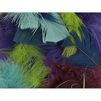 Packaged Feathers 70g-Designer Mix  39915