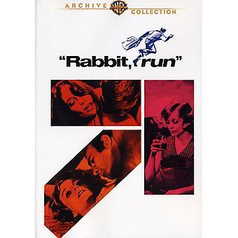 Rabbit Run [DVD] USA import