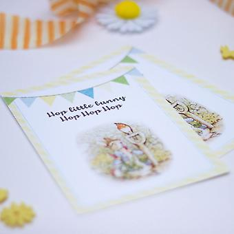 Peter Rabbit Invites with Bunting design and envelopes Set of 6 Party Christening