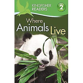 Kingfisher läsare: Där djur bor (nivå 2: börjat läsa ensam) (kungsfiskare läsare nivå 2)