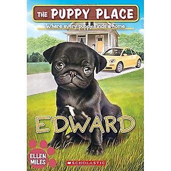 Edward (de Puppy plaats #49) (Puppy plaats)