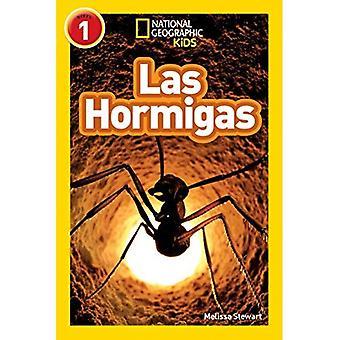 Leitores de crianças geográfica nacional: Hormigas (L1) (leitores) (leitores)