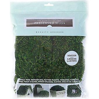 Preserved Mood Moss 112.5 Cubic Inches Qg1438