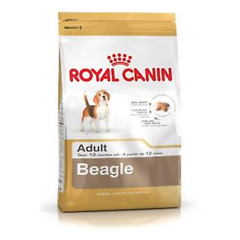 Royal Canin Beagle Adult (Dogs , Dog Food , Dry Food)