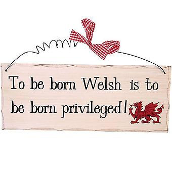 Something Different To Be Born Welsh Hanging Sign