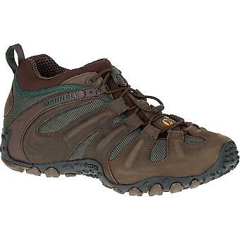 Chaussures homme Merrell Chameleon II Stretch J559601